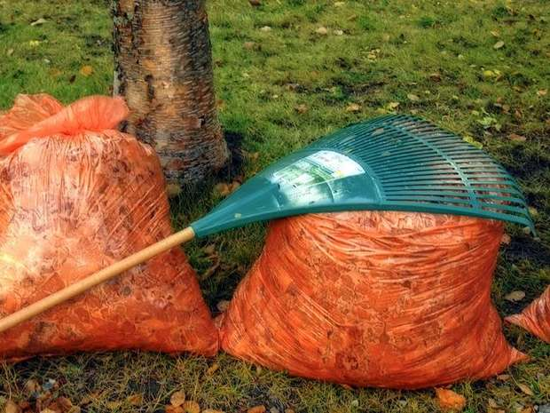 autumn fall rake leaves garden tool orange bag
