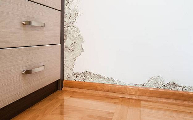 mold-damage-caused-by-damp-on-a-wall-in-modern-house