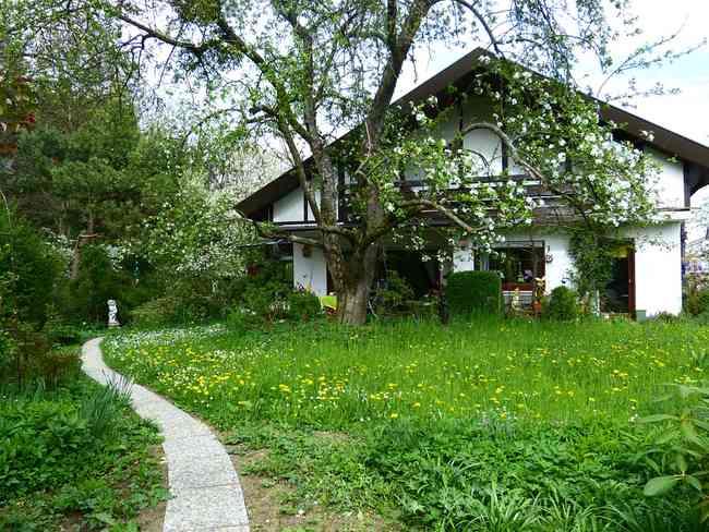 home-garden-meadow-house