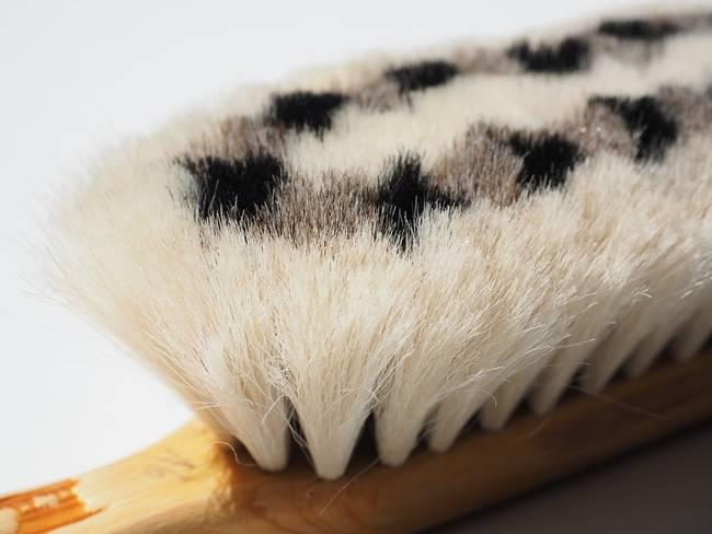 brush-bristles
