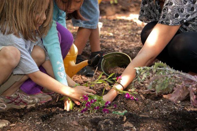kid-gardening-planting