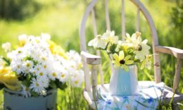 How To Create the Perfect Summer Garden