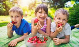 Maintaining Garden Safety For Your Children