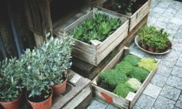 Sourcing The Tools For Your Outdoor Renovation